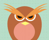 Owl face Royalty Free Stock Photography