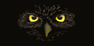 Owl Face Cloaked in Black Royalty Free Stock Images