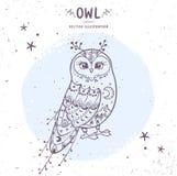 Owl fairy Royalty Free Stock Photos