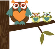 Owl Family. New Zealand owl in front of a white background vector illustration