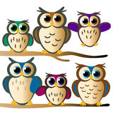 Owl family. Family of owls on branches Royalty Free Stock Images