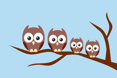 Owl family. Sitting on a tree branch Stock Images