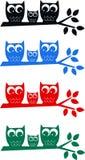 Owl family royalty free stock photography