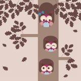 Owl family. Decorative background royalty free illustration