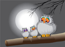 Owl family. Illustration of a owl family at night Royalty Free Stock Images