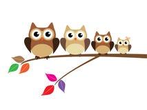 Owl Family Foto de Stock Royalty Free