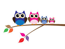 Owl Family Royaltyfria Foton