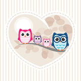 Owl Family Immagine Stock