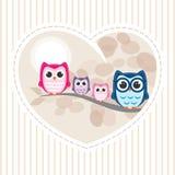Owl Family Stock Afbeelding