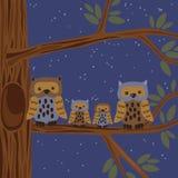 Owl Family auf dem Baum Lizenzfreie Stockfotografie
