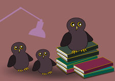 Owl Family with Books Stock Image