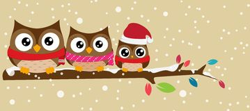 Owl family on the branch christmas banner vector illustration