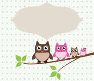 Owl family card Royalty Free Stock Photos