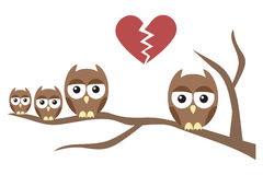 Owl Family Divorce Stock Photo