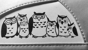 Owl family. Happy Owl family design royalty free stock photography