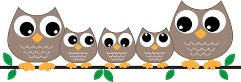 Owl family header or banner Stock Photo