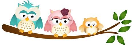 Owl Family heureux sur la branche d'arbre Photographie stock libre de droits