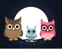 Owl family at night. Owl family perching at night, with brown owl, light blue owl and pink owl  illustration Stock Photos
