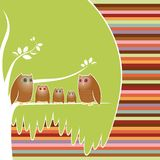 Owl Family Tree stock illustration