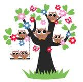 Owl family tree royalty free stock image