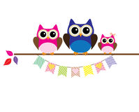 Owl Family Stock Photos