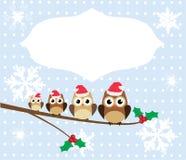 Owl Family Royalty Free Stock Photo