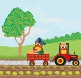 Owl Farmers Stock Image