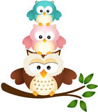 Owl father with two sons Royalty Free Stock Image