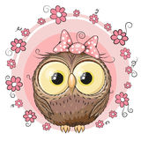 Owl with flowers Stock Photos