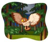 Owl flying Stock Photos
