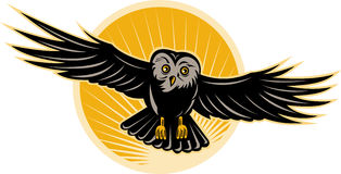 Owl flying towards you Royalty Free Stock Photography