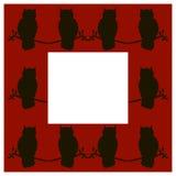 Owl frame Royalty Free Stock Image