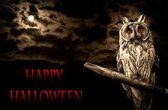 Owl and full moon halloween abstract Stock Image
