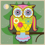 Owl-general Stock Image