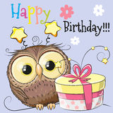 Owl with gift Stock Images