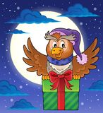 Owl with gift theme image 2 Stock Image