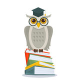 Owl with glasses and academic hat sitting on books stack. Owl on books isolated. Education concept with owl. Vector illustration. Royalty Free Stock Images