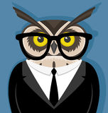 Owl with glasses Royalty Free Stock Photography