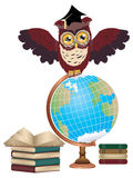 Owl with Globe Stock Images