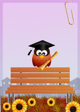 Owl graduate Royalty Free Stock Photography
