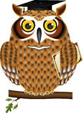 Owl - a graduate in a mortar board hat and diploma Royalty Free Stock Photos