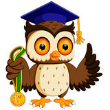 Owl in the graduate`s. Illustration of owl in the graduate`s Stock Images