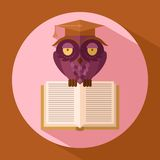 Owl in graduation cap Royalty Free Stock Photos