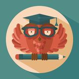 Owl in graduation cap Royalty Free Stock Image