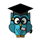 Owl with graduation hat Stock Images