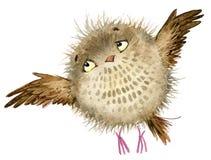 owl gullig owl vattenfärgskogfågel Skolaillustration Tecknad filmfågel royaltyfri illustrationer