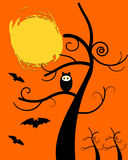Owl Halloween Stock Images
