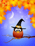Owl of Halloween Royalty Free Stock Images