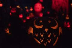 Owl Halloween Pumpkin royalty-vrije stock afbeeldingen