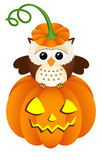 Owl in halloween pumpkin Stock Photography